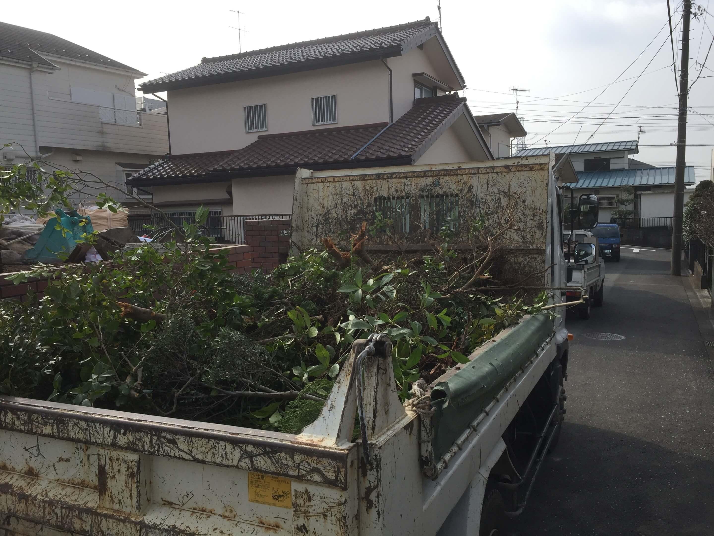 伐採した植木をトラックに積み込んでいる様子