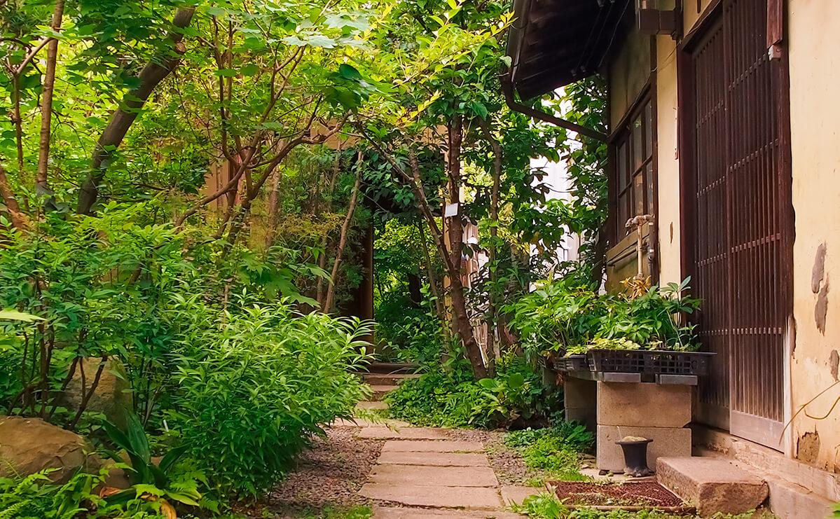 日本家屋の庭先の画像